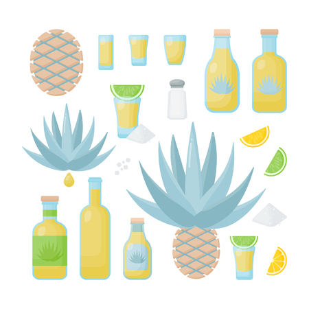 Tequila and blue agave vector flat icon set, Big collection of flat design of agava products isolated on the white background, cute vector illustration Ilustracja