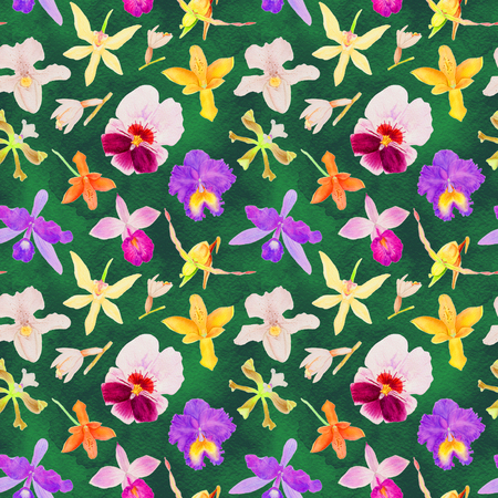 Orchid seamless pattern, watercolor illustration with different hand drawn tropical flowers, orchids isolated on the green watercolor background Imagens