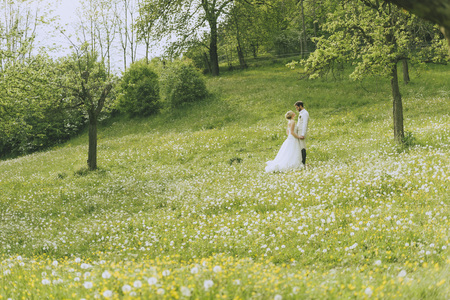 jackboots: Wide angle shot of a bridal couples standing on a white flowering blumenwiese between white flowering appletrees Stock Photo