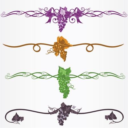 grapes frame ruleline Vector