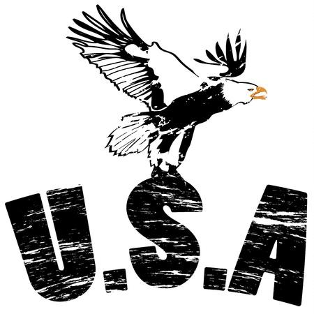 Eagle met de VS bij grunge illustratie Stockfoto - 11307095