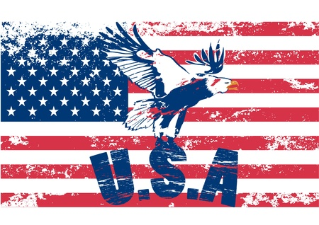 Eagle with usa in grunge illustration Vector