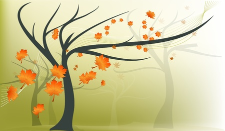 Autumn maple tree with falling leaves Illustration