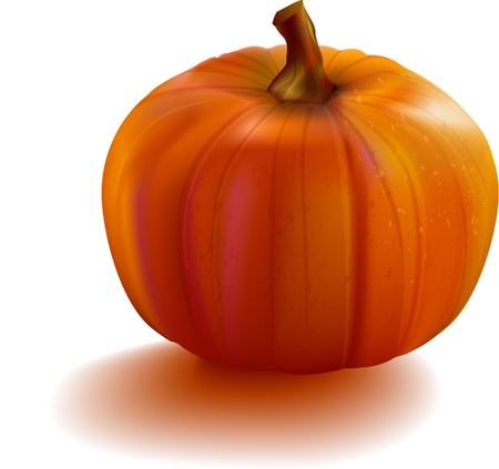 Pumpkin realistic with mesh