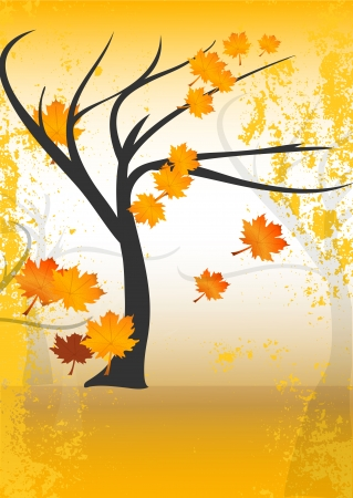 Autumn or fall tree with leaves Illustration