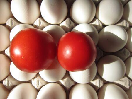 eggtray: TOMATOES ON EGG
