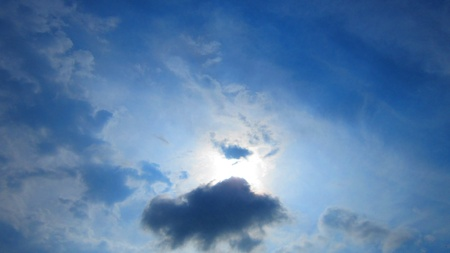 stupendous: Bird flying in Bright sun in cloudy sky