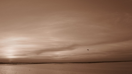 Amazing sunset shot in sepia mode.