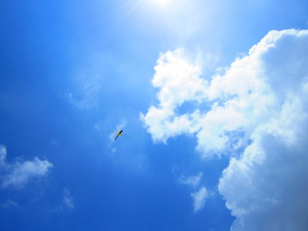 Dragonfly flying in deep blue cloudy sunny sky