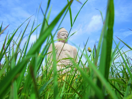 Lord Buddha statute as seen from grass level BODHGAYA, BIHAR, INDIA, Asia  Shot taken on  August 2012 photo