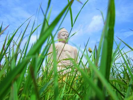 bodhgaya: Lord Buddha statute as seen from grass level BODHGAYA, BIHAR, INDIA, Asia  Shot taken on  August 2012 Stock Photo