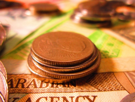 quota: BEAUTIFUL CLOSE UP OF CURRENCY, COINS AND MONEY