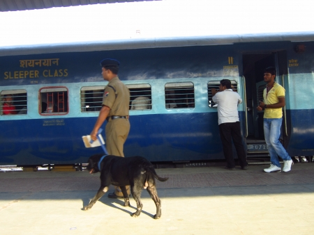sniffer: POLCE PERSONNEL WITH SNIFFER DOG. SHOT AT SEALDAHA RAILWAY STATION, KOLKATA, INDIA MORNING HOURS ON 28.10.12 Editorial