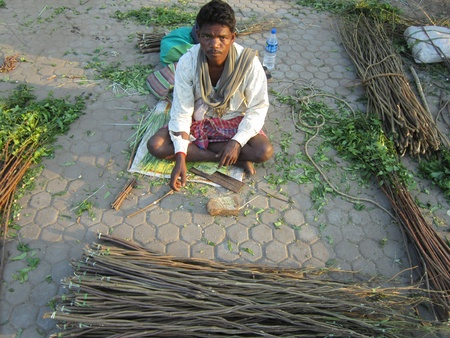 MAN SELLING NEEM TREE TWIG USED FOR BRUSHING TEETH. SHOT AT AFTERNOON HOURS ON 31.10.12 AT PATNA, BIHAR, INDIA.