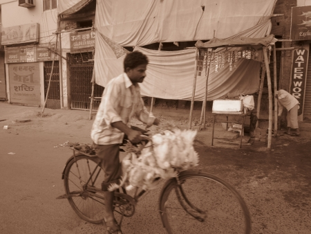 bihar: A MAN CARRYING CHICKEN ON CYCLE FOR SELL. SHOT AT MORNING HOURS ON 03 NOVEMBER 2012 AT  PATNA, BIHAR, INDIA
