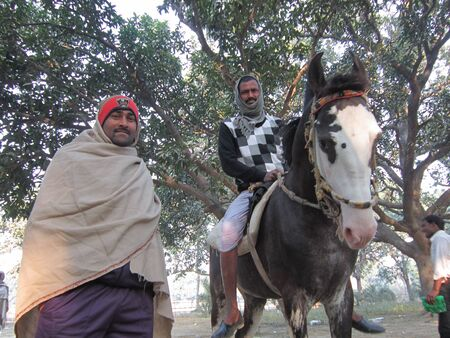 sonepur fair: MAN RIDING HORSE.SHOT DURING MORNING HOURS ON 02.12.12 AT SONEPUR FAIR, SONEPUR, BIHAR, INDIA.