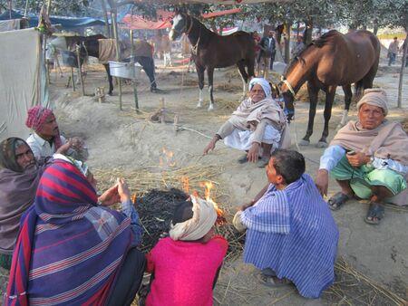 sonepur fair: HORSE SELLERS AND HORSES.SHOT DURING MORNING HOURS ON 02.12.12 AT SONEPUR FAIR, SONEPUR, BIHAR, INDIA. Editorial