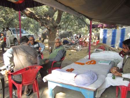 sonepur fair: TENT AT ELEPHANT ENCLAVE.SHOT DURING MORNING HOURS ON 02.12.12 AT SONEPUR FAIR, SONEPUR, BIHAR, INDIA.