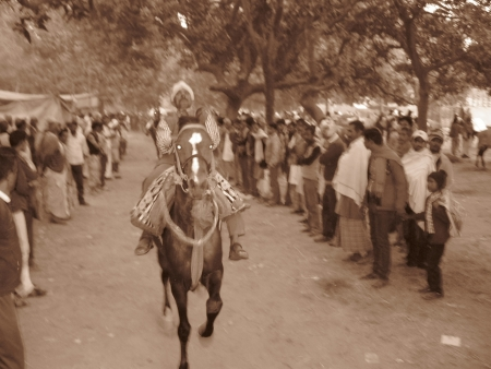 bihar: HORSE RIDER RIDING A HORSE.SHOT DURING AFTERNOON HOURS ON 02.12.12 AT SONEPUR, BIHAR, INDIA. Editorial