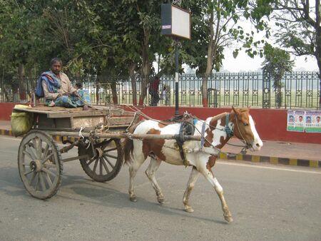 tanga: TANGAS non identificati sul ROAD. TRASPORTO TANGA O CAVALLO soffre DUE AUTOMOBILE BOOM. Tiro in ore del mattino il 13 febbraio 2013 alle Patna, Bihar, India.