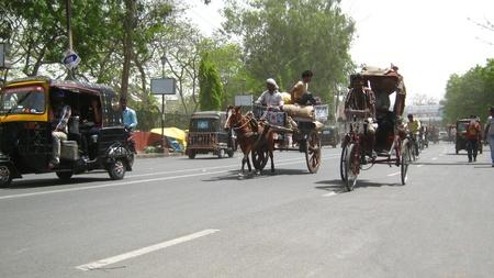tanga: Condotto cavallo TANGA IN STRADA. Girato a ore pomeridiane il 05 aprile 2013 in Patna, in India. Editoriali