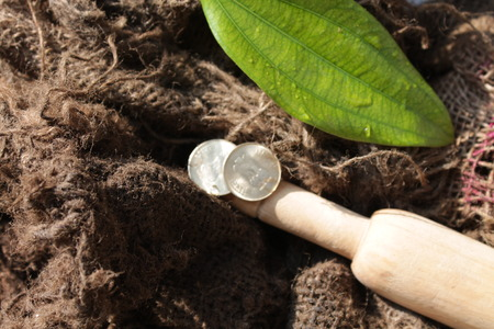 incertaininty: Indian coin