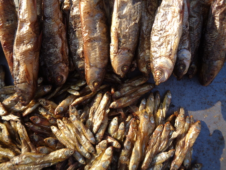 Dry fish on sale  at Imphal, Manipur. Nov 16. Stock Photo