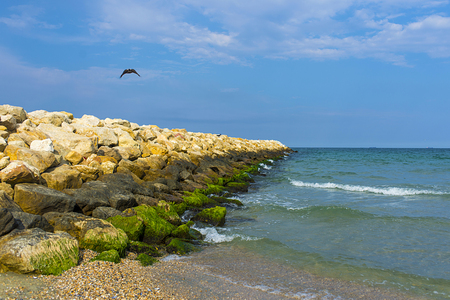 shiver: Black sea coast in Constanta, Romania