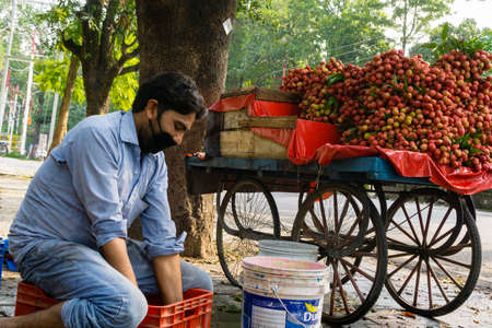 EDITORIAL DATED-16TH JUNE 2020 LOCATION-DEHRADUN INDIA. A road side fruit seller selling litchi on his small cart. Redakční