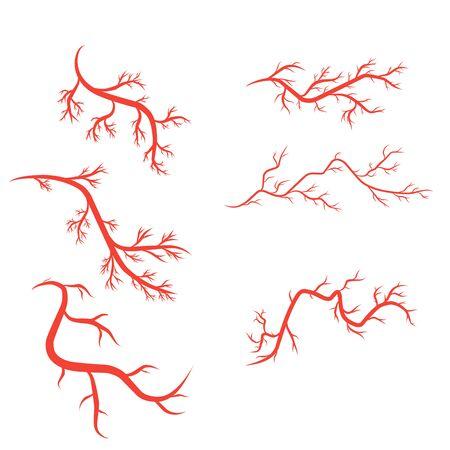 humans arteries and veins vector illustration design template