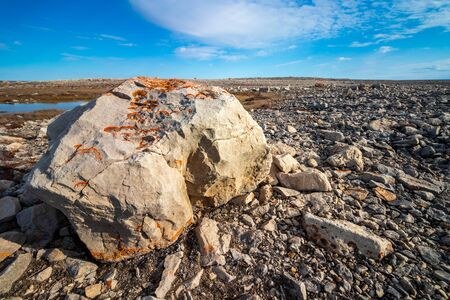 Rocks and stones in the beach of Lady Richardson Bay at the southwest coast of Victoria Island, Nunavut, Northern Canada.