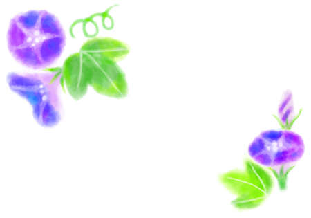 Watercolor morning glory illustration material