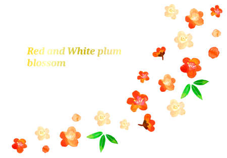 The background illustration of the red and white plum of the watercolor Illusztráció