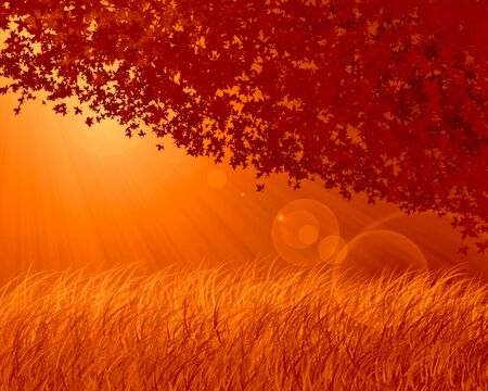 Abstract forest background, autumn theme photo