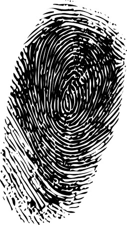 id theft: Abstract vector fingerprint on white