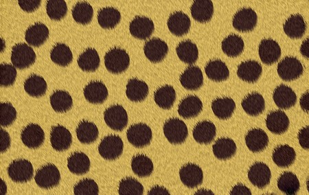 Abstract raster cheetah texture background. Stock Photo - 4064760