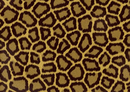 Abstract raster leopard texture background Stock Photo - 4064734