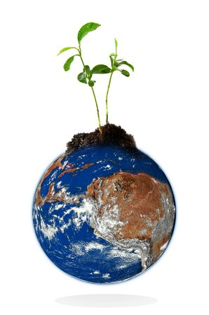 Baby plant growing from the earth over a white background. Data source: nasa. photo