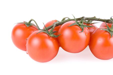 Ripe tomatoes on the green branch. Stock Photo - 4479516