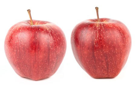 Two ripe red apples on white photo