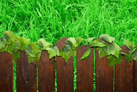 Wooden brown picket fence against green grass lawn Stock Photo - 4951279