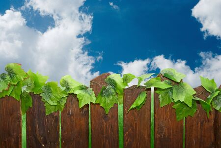 rural fence on the green field and blue sky background Stock Photo - 4951297