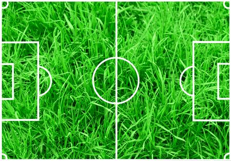 Soccer field with white lines on green grass background photo