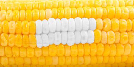 corn yellow: Concepto de Estomatolog�a de ma�z amarillo maduro como los dientes de
