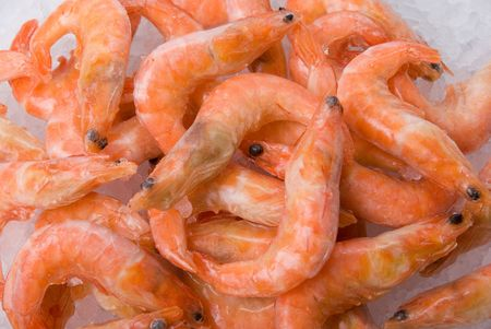 Closeup King shrimps at fishmarket on ice background  photo