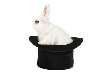 Little rabbit at magic hat isolated on a white background  photo