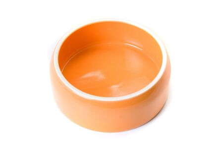 Bowl for pets isolated on a white background photo