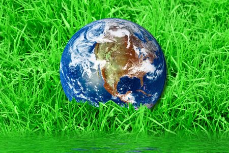 Earth at the succulent green grass background photo