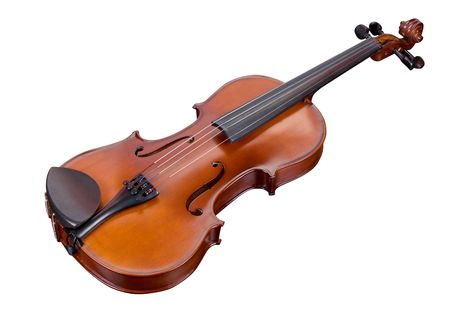 classic violin isolated on a white background photo