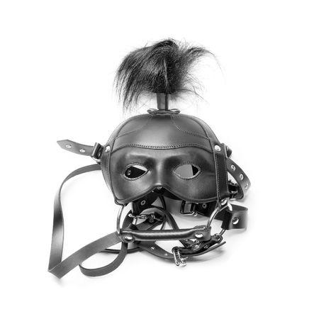 sadomasochism: mask